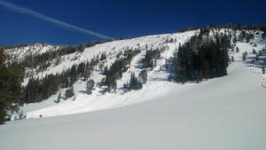 Avalanche in Beehive 3 - Jan 15