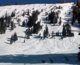 Avalanche in Beehive 4 - Jan 15
