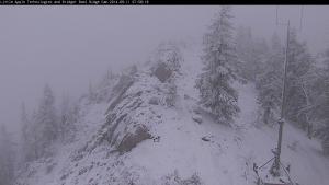 Fresh Snow at Bridger Bowl