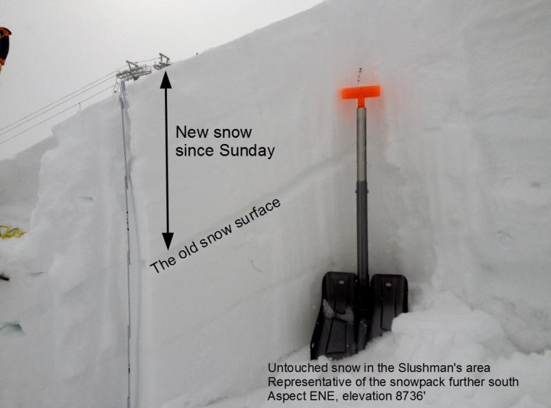 Bridger Range Snowpack