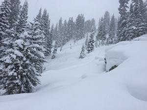 Skier triggered avalanche in storm snow near Cooke City