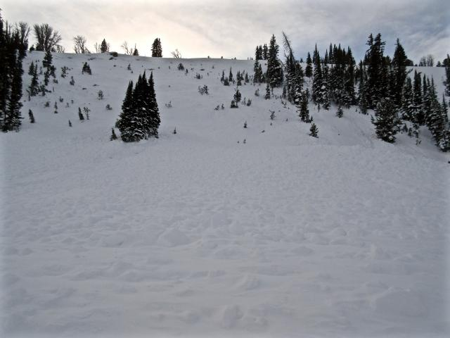 Avalanche in first Yellowmule on Buck Ridge