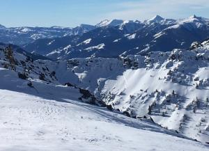 Avalanche near Divide Peak