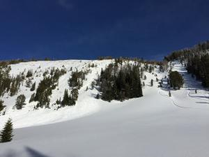 Avalanche in Beehive 2 - Jan 15