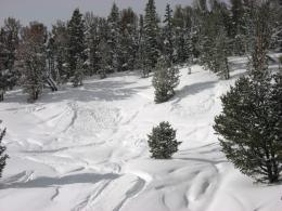 Two small slides in Buck Ridge