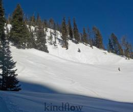 Small, wet, loose avalanches