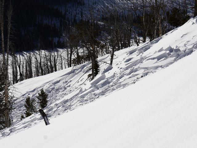 Natural wind slab release - Yellowstone Park