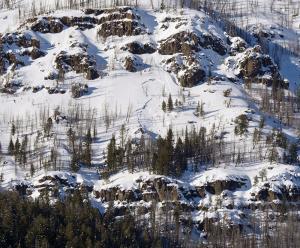 YNP: small avalanche on Druid Peak