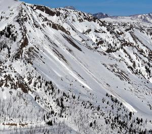 Wet Loose Avalanches