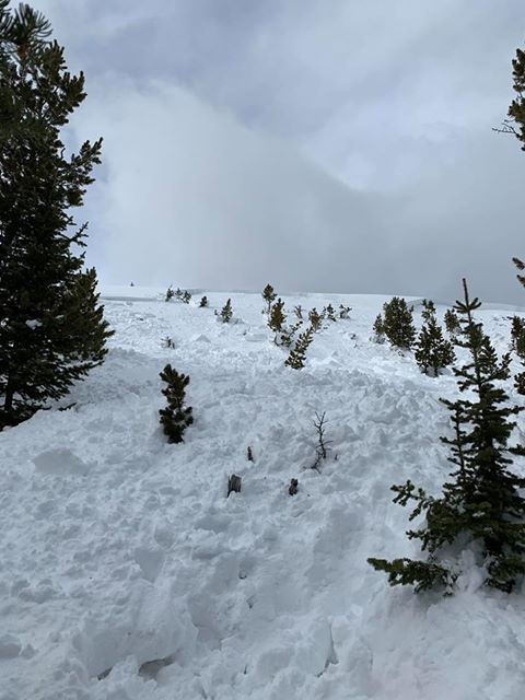 Snowmobile triggered avalanche in Little Belts | Gallatin