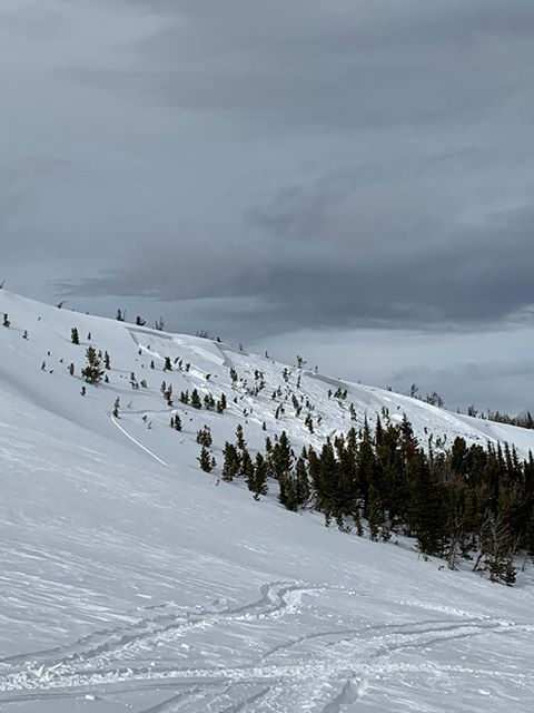 Snowmobile triggered avalanche in Little Belts | Gallatin National