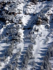 Small Natural Avalanche - Northern Gallatin Range