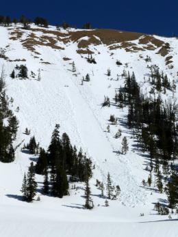 Loose snow avalanche - Beehive Basin 3/30/15